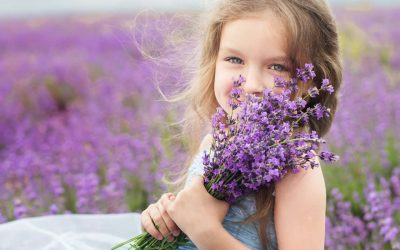 Kent Lavender Field Photoshoot